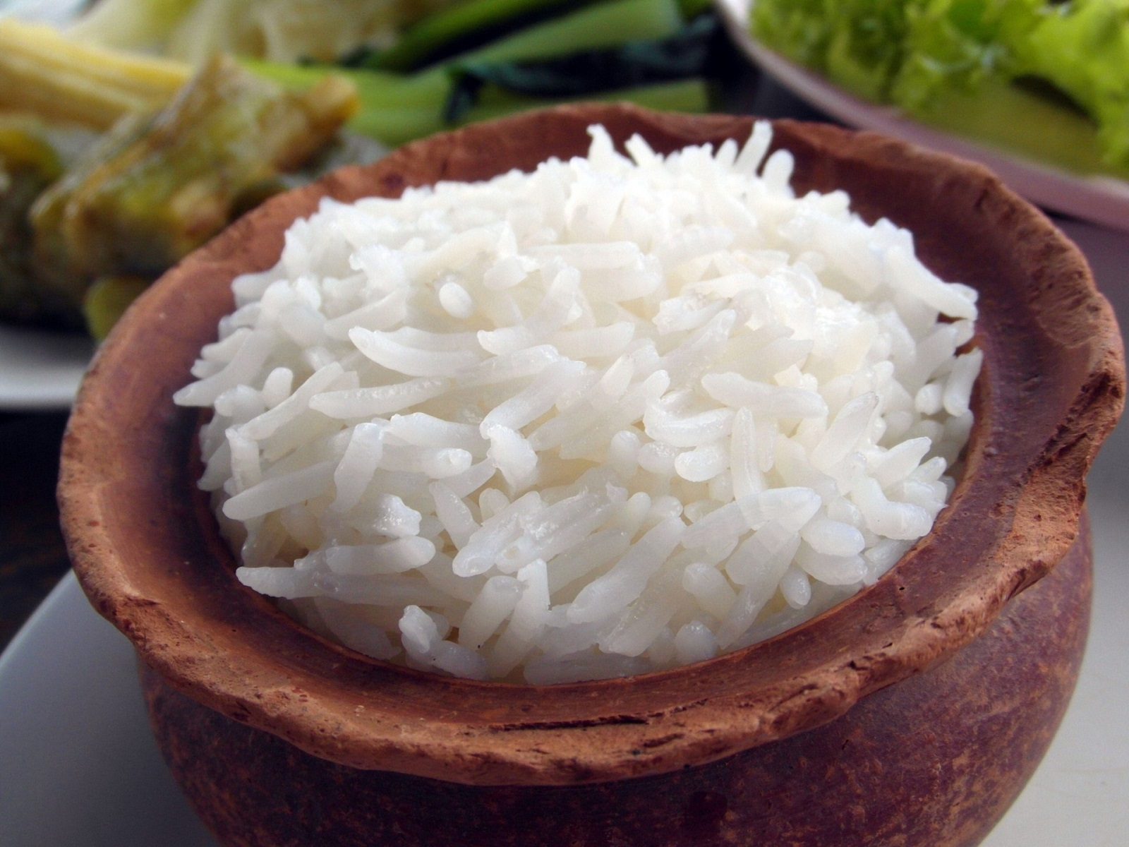 Bowl of Jasmin Rice for Pets