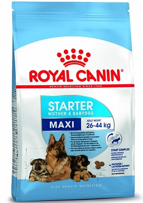 Royal Canin Maxi Starter Food for Large Dogs